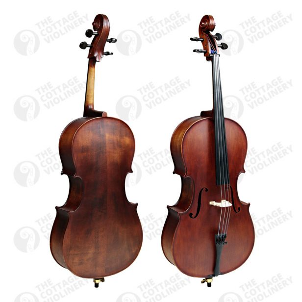 enrico-student-plus-ii-cello1