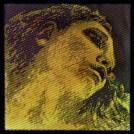 evah-pirazzi-gold-strings1