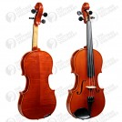 kg-80-violin1